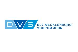 DVS-Logo